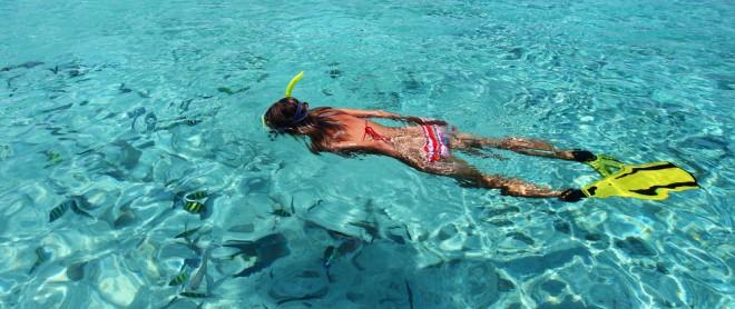 cropped-snorkeling2.jpg